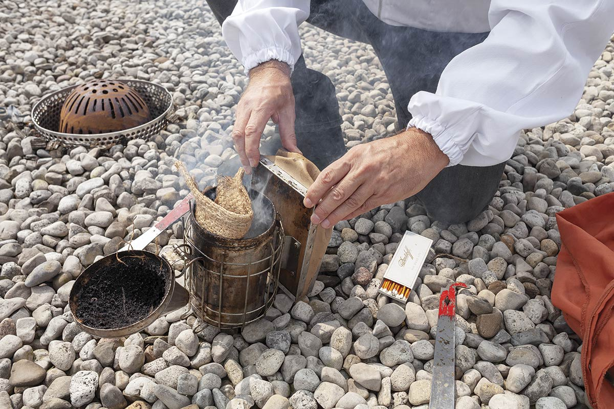 Hands of a beekeeper handling a bee smoker on the ground, which is covered in stones.