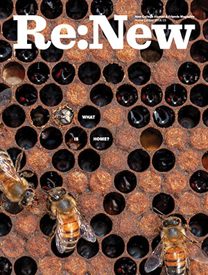 Re:New Magazine Cover Image (Close-up of beehive with a number of bees, one of them hatching.)